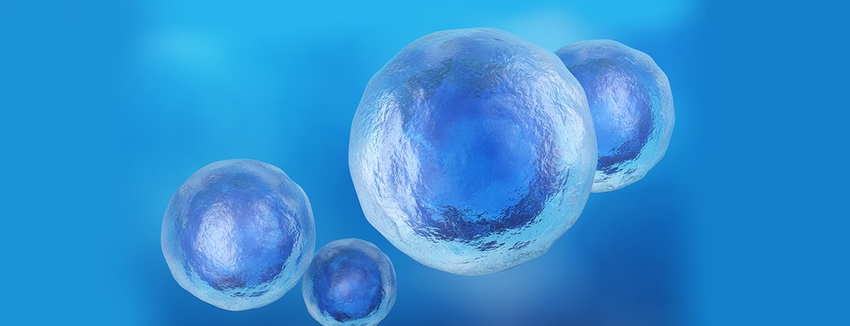 Vitamin C in Stem Cell Biology