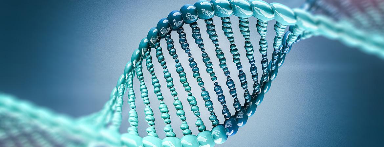 Βιταμίνη D & Επιγενετική και Γονιδιακή Ρύθμιση