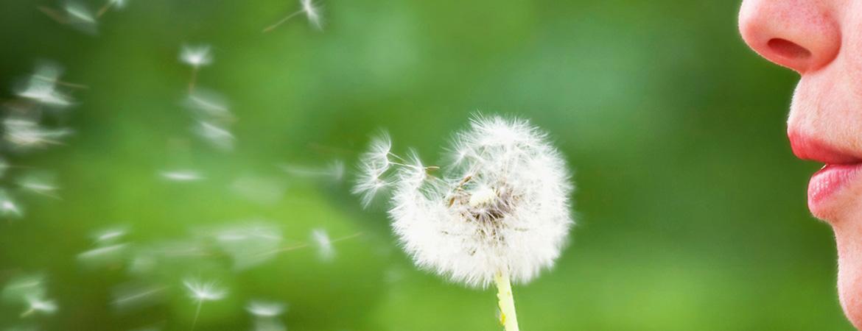 Ποιές είναι οι Αιτίες των Αλλεργιών και πως Αντιμετωπίζονται